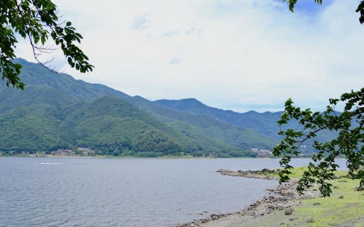 河口湖ハーブフェスティバル ラベンダー 八木崎公園